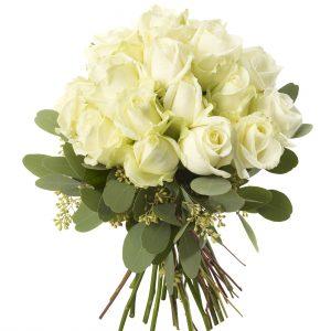 White Rose Dome